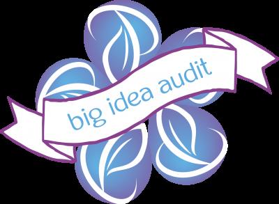 big idea audit